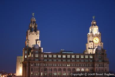 Liver Building at Night